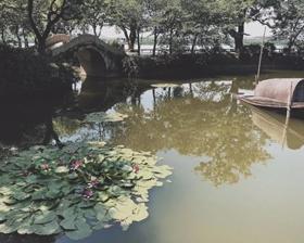 申丞·千禾员工旅行篇 | 感恩于心 2019我们继续前行